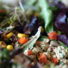 Thumbnail image for Infinitely Variable & Always Delectable Tofu Salad